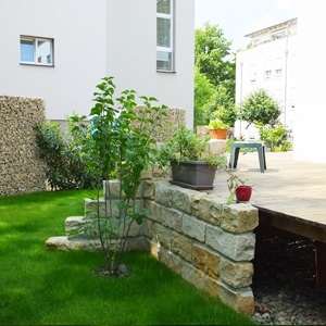 privater Garten in Dresden-Striesen